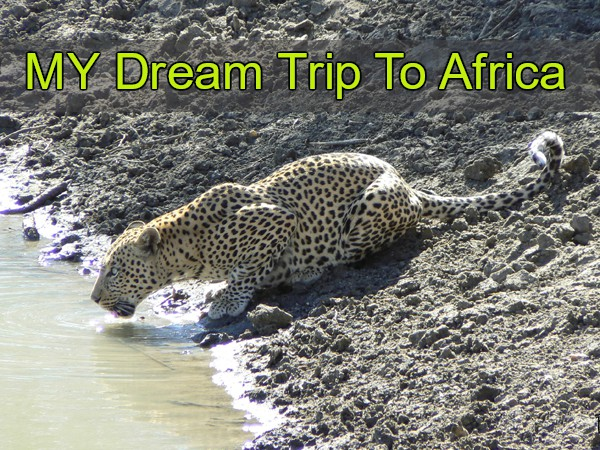 My Dream Trip to Africa